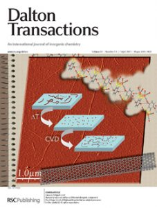 Nanostructures on surfaces of the metalorganic compound